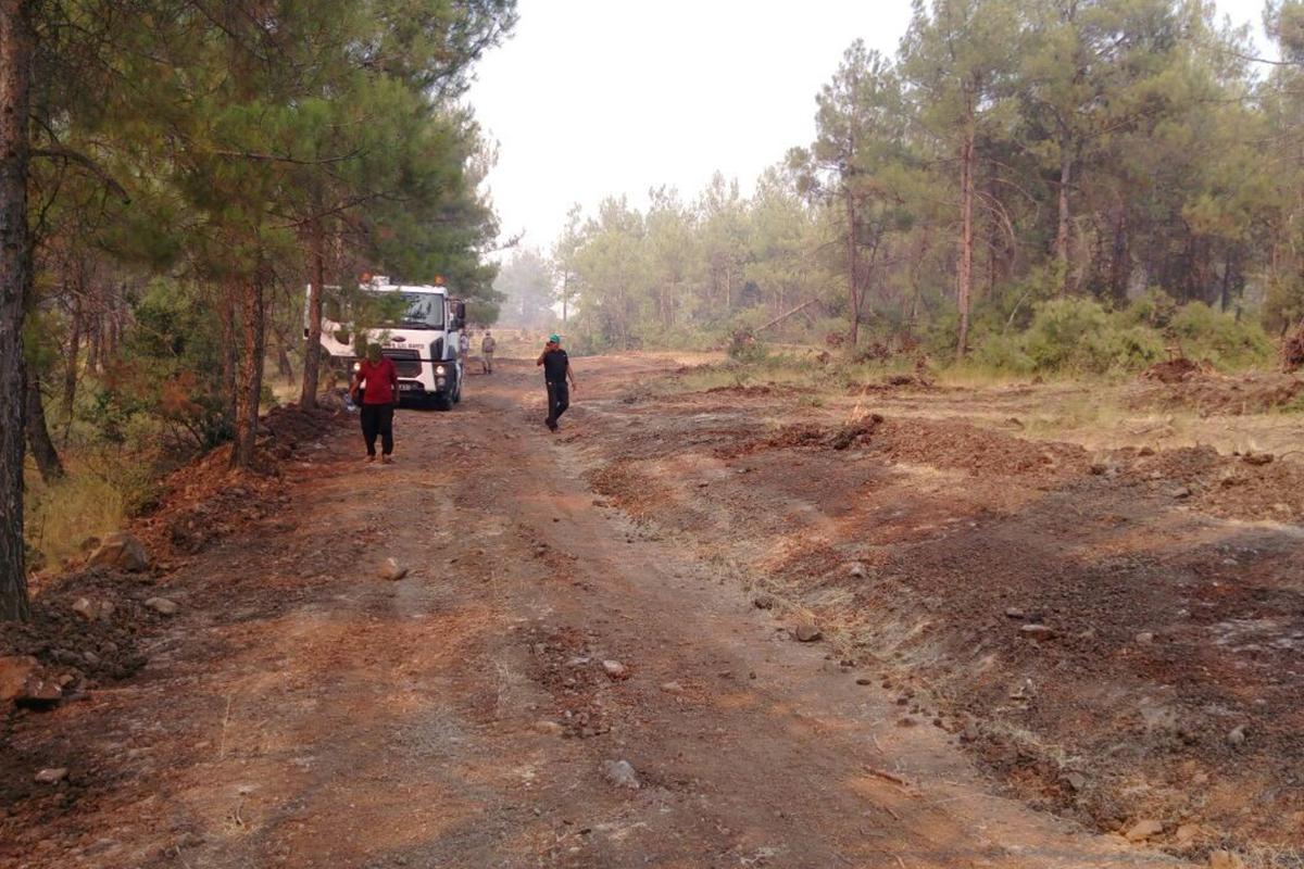 Kilis'teki orman yangını kontrol altına alındı