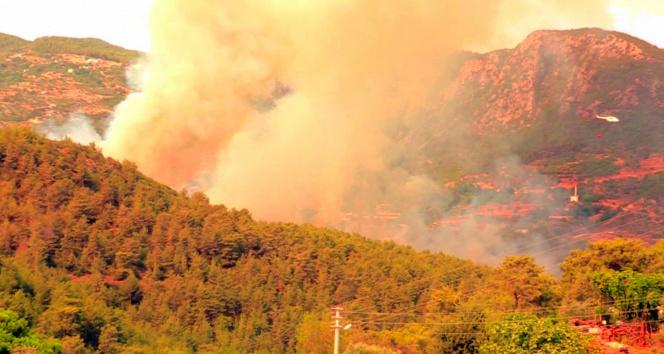 Alanyada orman yangını kontrol altına alındı