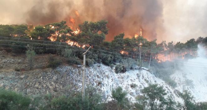 Orman yangını çıkarmak için gelen PYD/PKKlı 2 terörist yakalandı