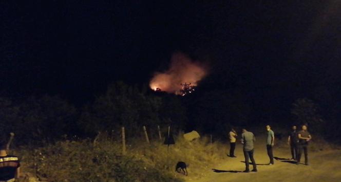 Manisada orman yangını başladı
