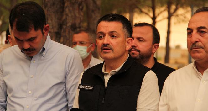 Bakan Pakdemirli: Muğlada Milas ve Bodrum yangınları kontrol altına alındı