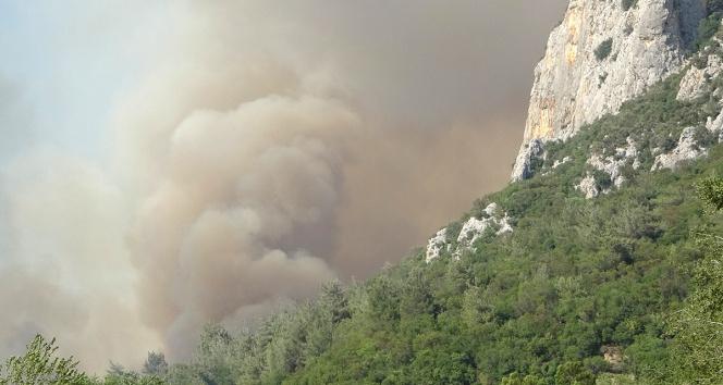 Osmaniyedeki orman yangını kısmen kontrol altına alındı