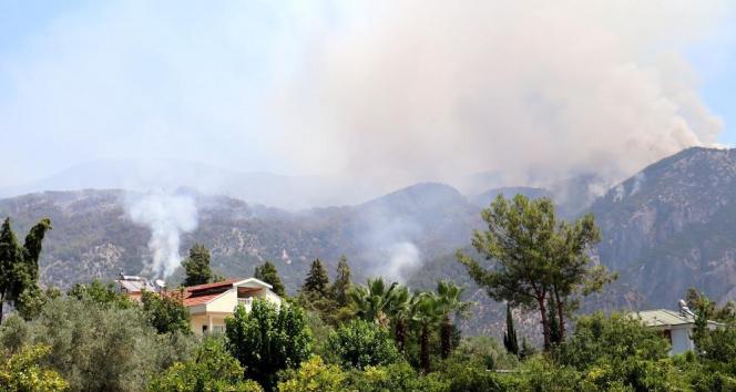 Köyceğizdeki orman yangını devam ediyor