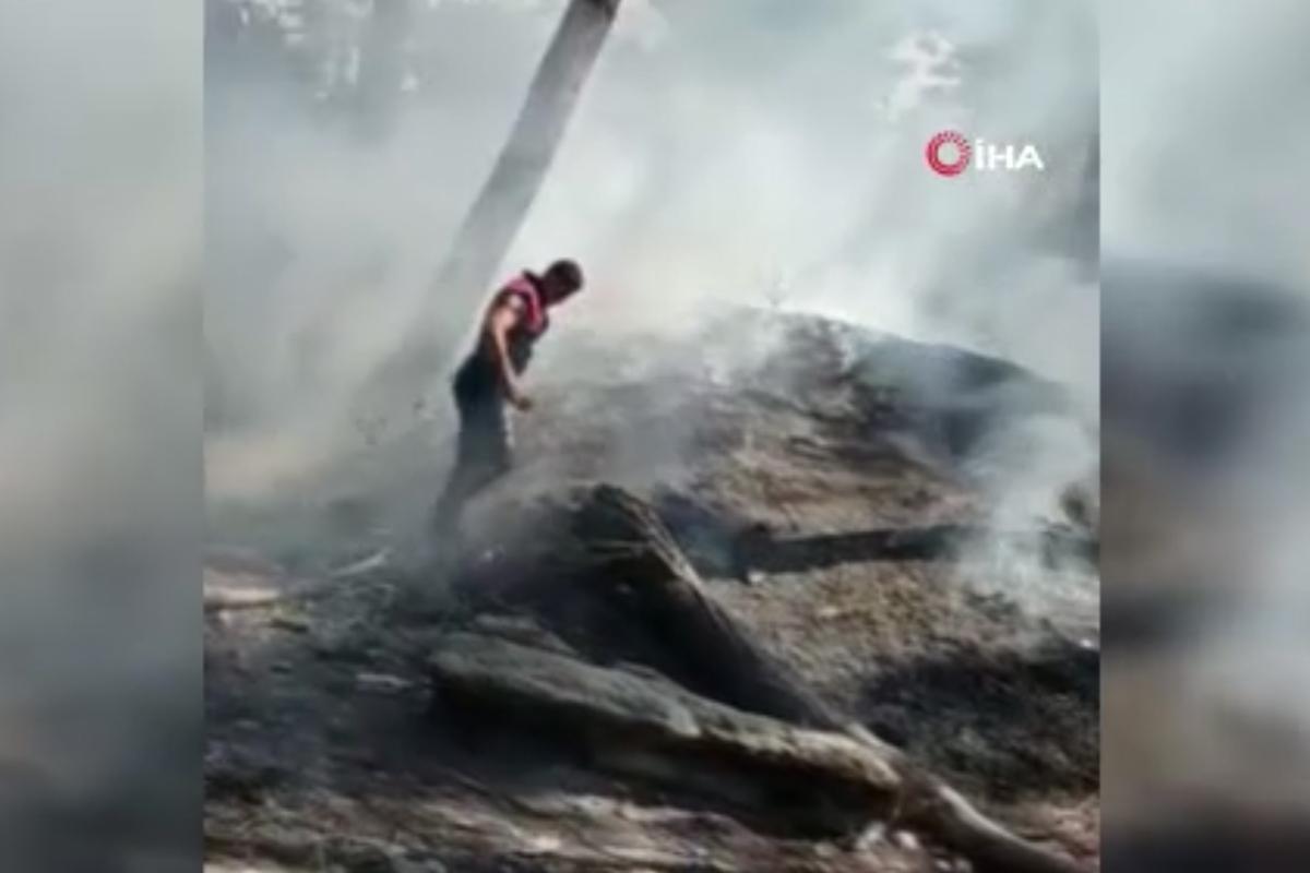 Bakırköy'de ağaçlık alanda korkutan yangın
