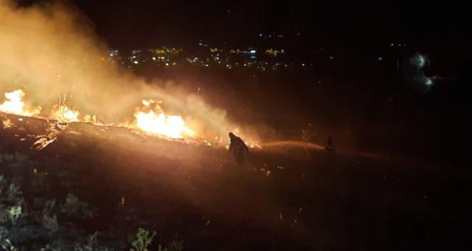 Bandırmada otluk alanda yangın
