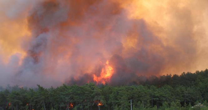 Manavgatta orman yangını devam ediyor, metrelerce yükselen alevler böyle görüntülendi