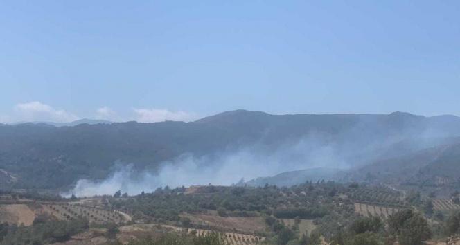 Hatayda ormanlık alanın yakınında yeniden yangın çıktı
