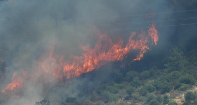 Bodrumda yangınlar büyüyor, bazı ev ve oteller tahliye ediliyor