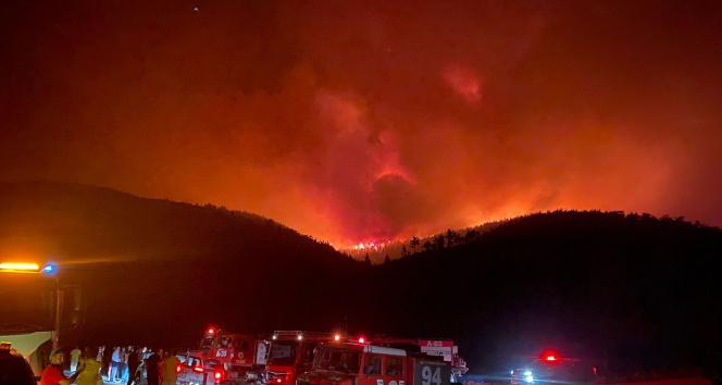 Milasta başlayan orman yangını Bodruma sıçradı, söndürme çalışmaları devam ediyor