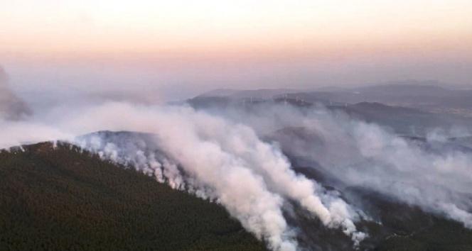 Muğlada yangın söndürme çalışmaları 4. gününde devam ediyor