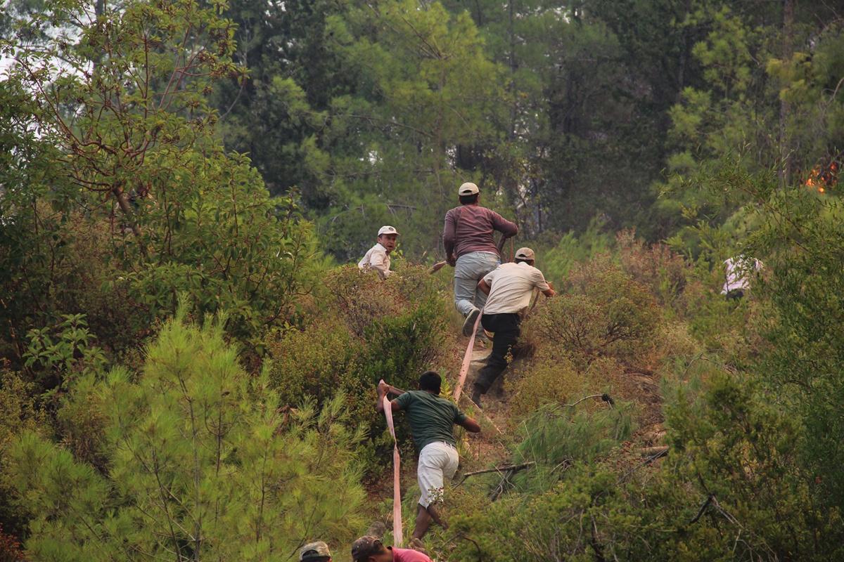 Manavgat yangınında vatandaşlar da canla başla çalışıyor
