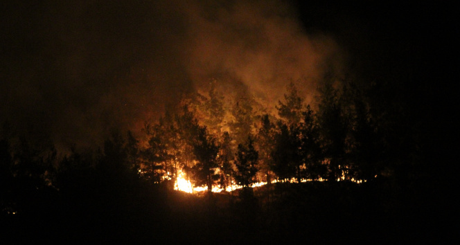 Manavgatta otellere yakın noktada yangın çıktı, silahını alan nöbete koştu