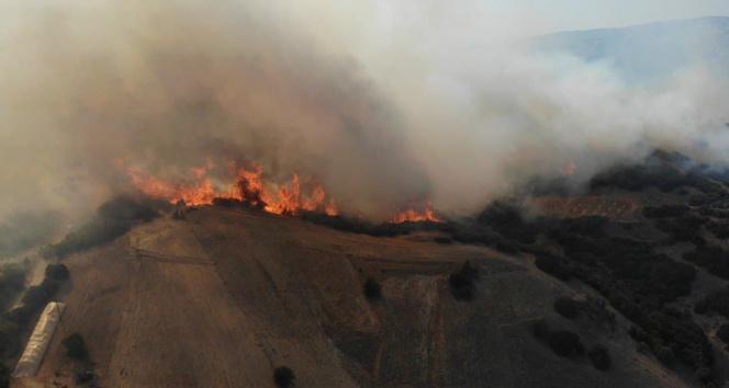 Denizlide 4 saattir devam eden yangın havadan görüntülendi