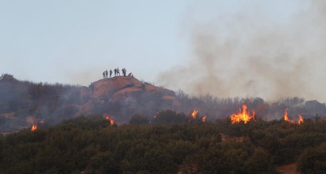 Denizlideki orman yangını kısmen kontrol altına alındı