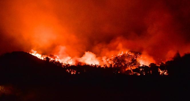 Marmariste rüzgarın şiddetiyle büyüyen yangın devam ediyor