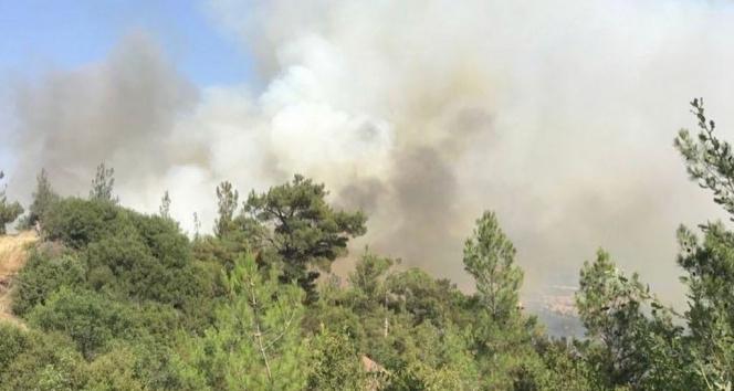 Dursunbeydeki orman yangını kontrol altına alındı