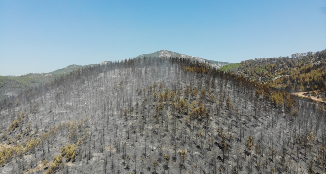 Ispartadaki Çandır köyünde söndürülen alanlar havadan görüntülendi