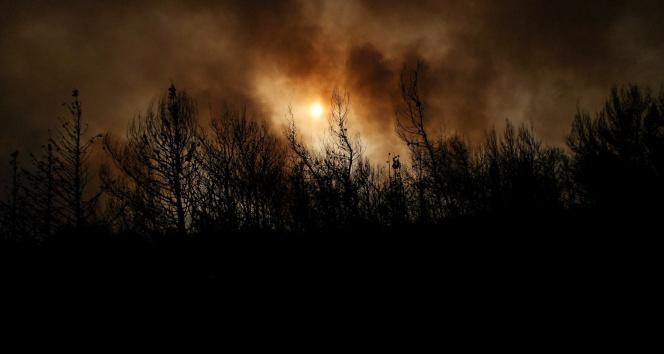 Atina çevresinde ormanlar alevlere teslim oldu