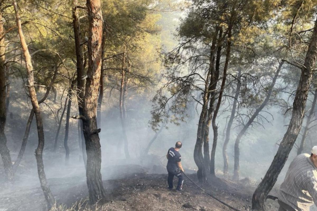 Manisa Büyükşehir Selçikli yangını için seferber oldu