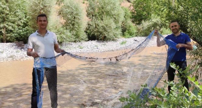 Vanda kaçak avlanılan 15 kilo sıraz balığı ele geçirildi