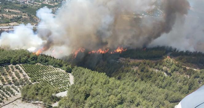 Hatayda orman yangınına müdahale ediliyor
