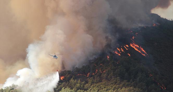 Muğlada yanan alan 40 bin hektara yaklaştı