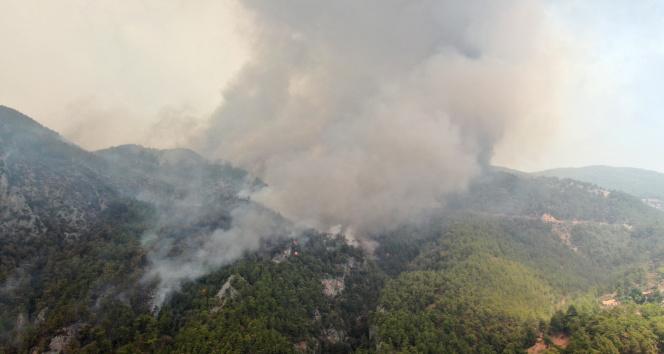 Köyceğizde dumanlar tekrar yükseldi