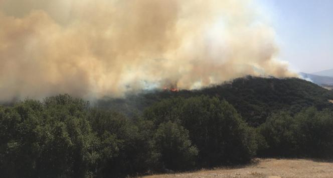 Denizlide 2 kere kontrol altına alınan yangın tekrar başladı