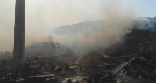 Türkiyeyi diken üstünde tutan yangında alevler termik santrali böyle sardı