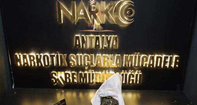 Antalyada narkotik polisinden uyuşturucu tacirlerine ağır darbe