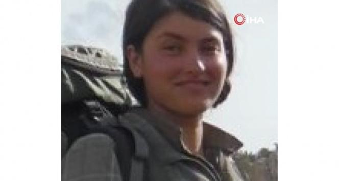 PKKya ağır darbe: 500 bin lira ödülle aranan terörist etkisiz hale getirildi