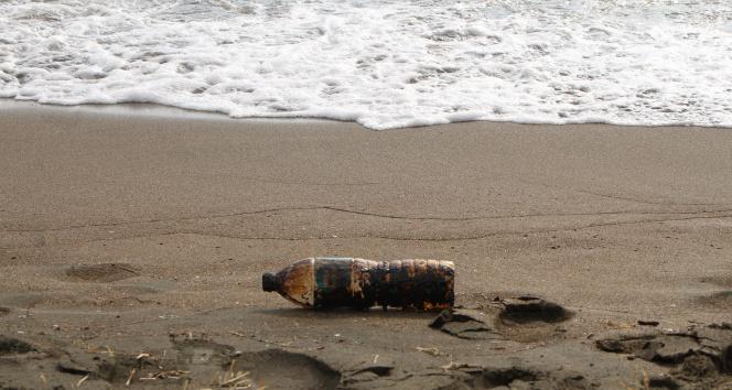 Samandağ sahiline vuran petrol atıkları canlıları tehdit ediyor