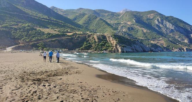 Suriyeden gelen petrol, 14 kilometrelik Samandağ sahilini sardı