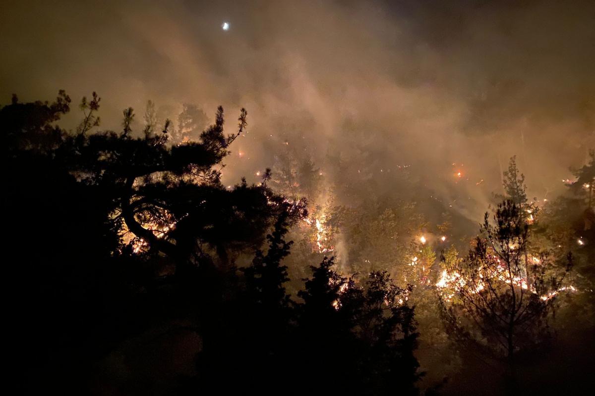 """OGM: """"Bugün çıkan 13 orman yangınının tamamını kontrol altına aldık"""""""