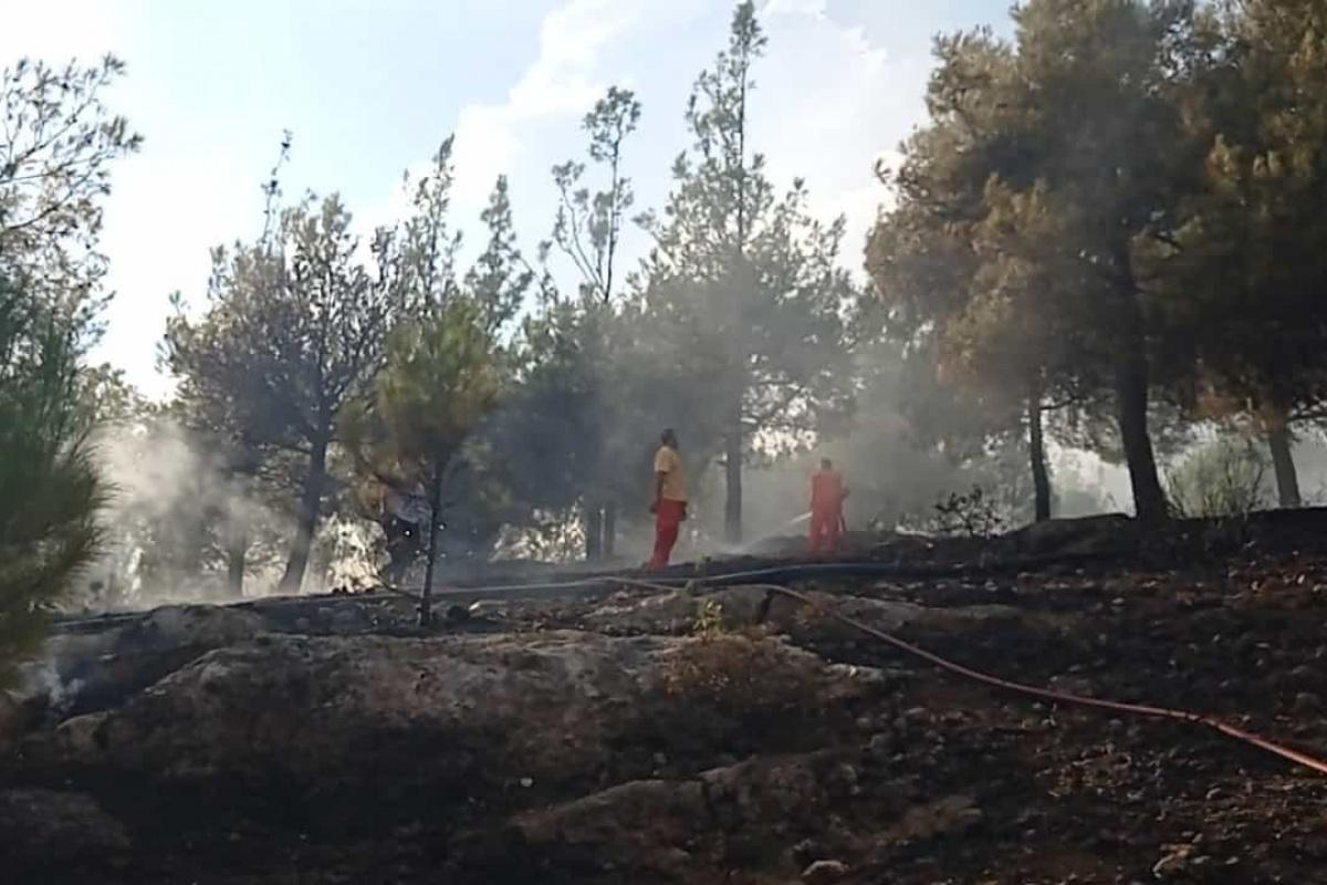 Kozan'daki Hatıra Ormanı'nda yangın