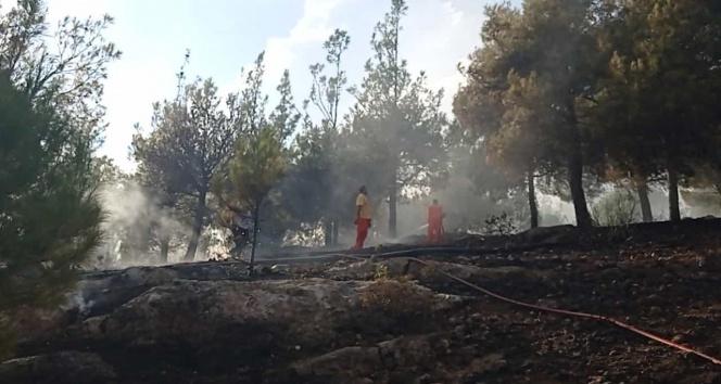 Kozandaki Hatıra Ormanında yangın