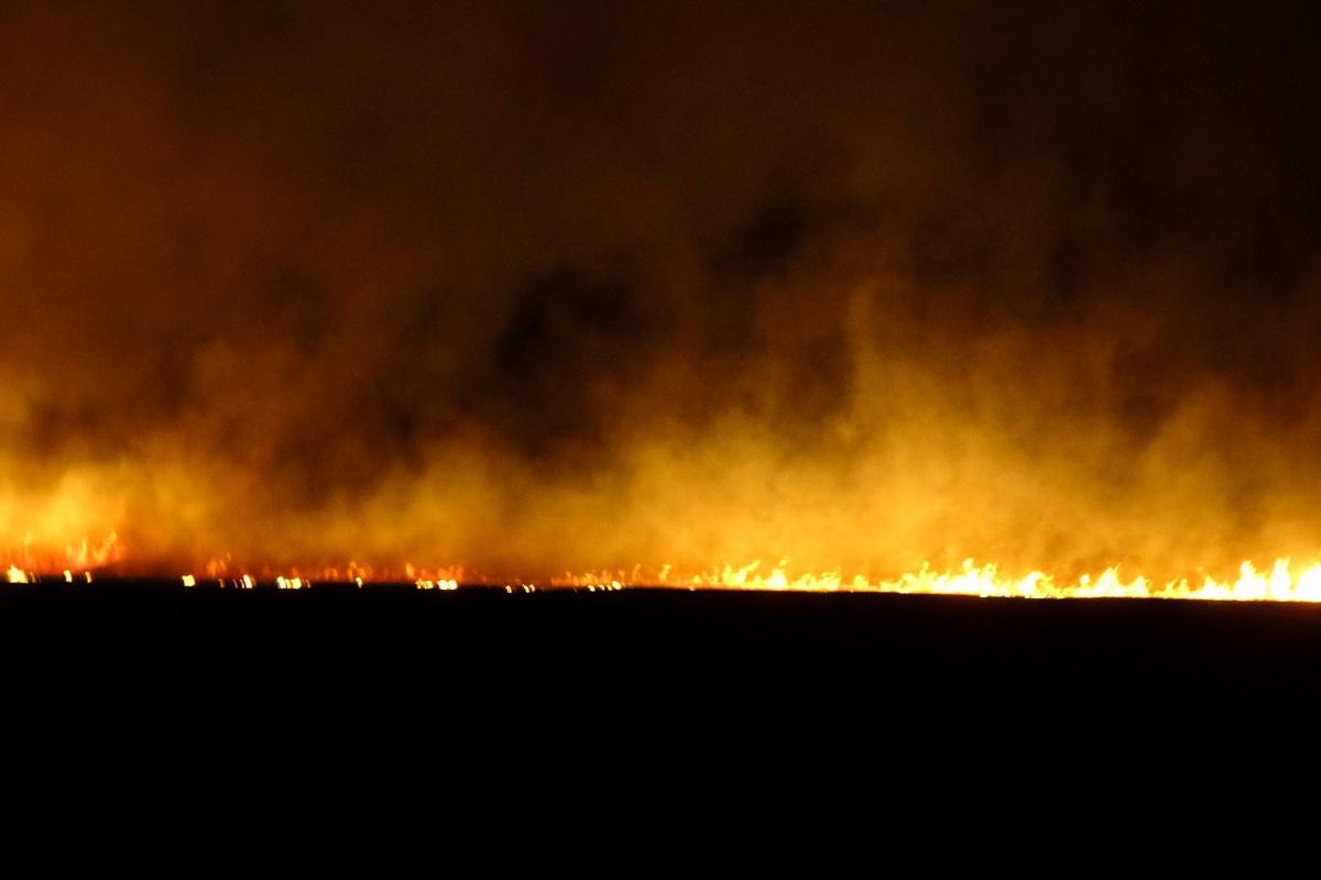 Yüksekova'daki sazlık yangınına müdahale sürüyor