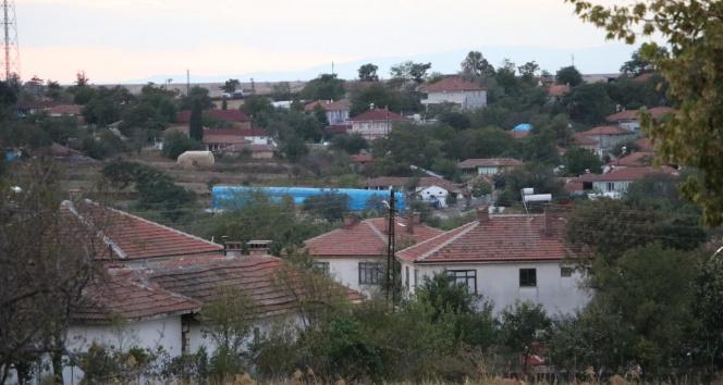 Edirnede kırmızı alarm: Kan emen sinek bulaştırdı, 8 köyde mavi dil karantinası başlatıldı
