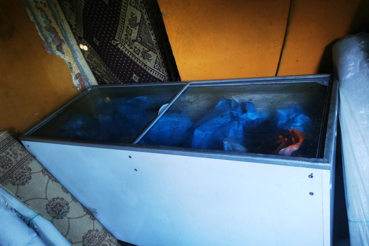 Avcılar'da halı yıkama yerinde saklanan etlere el konuldu