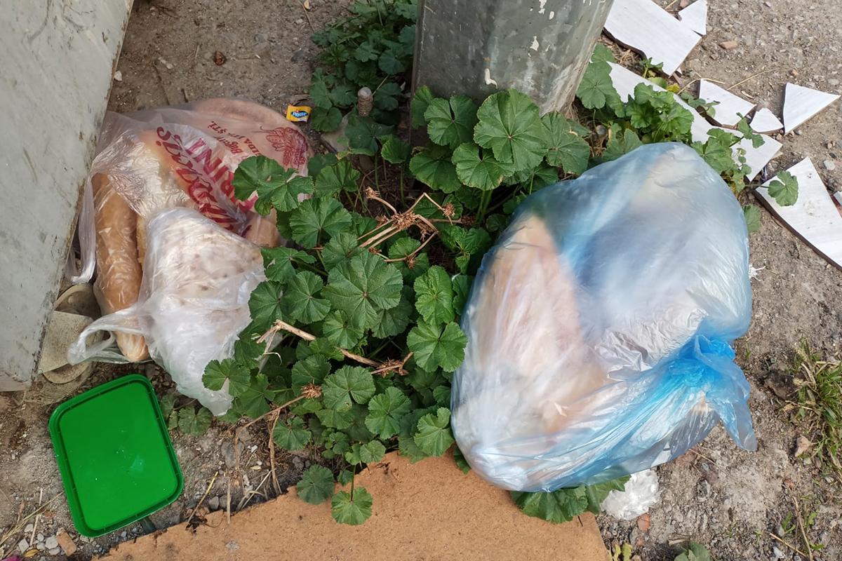 Dünyada 1,3 milyar ton gıda çöpe gidiyor