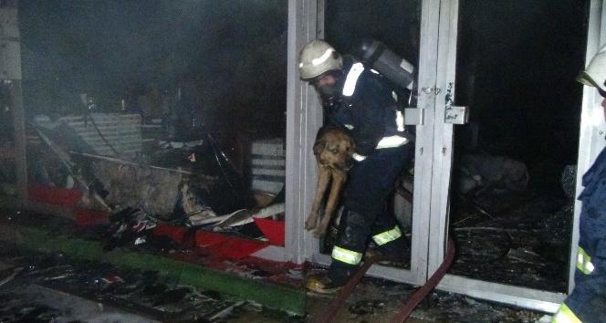 Antalya'da yeni yıla dakikalar kala çıkan yangın