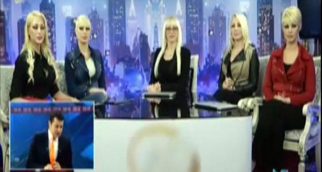 Kedicikler Cüneyt Özdemir'in programına katıldı